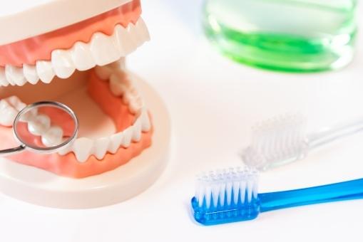 定期的な歯科検診で医療費も節約